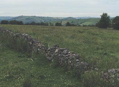 gallery-farm